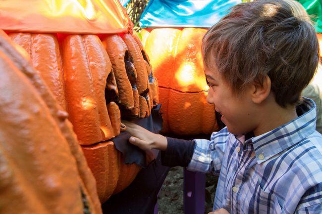 Bambino gioca con una zucca di Halloween a Mirabilandia