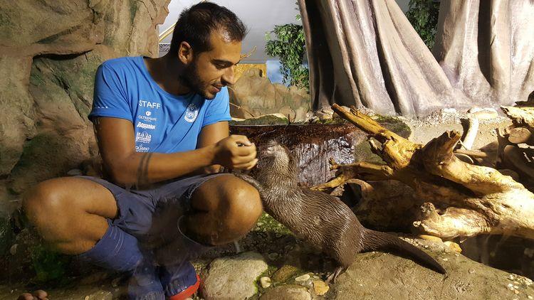 Orario di alimentazione animali all'Acquario di Cattolica