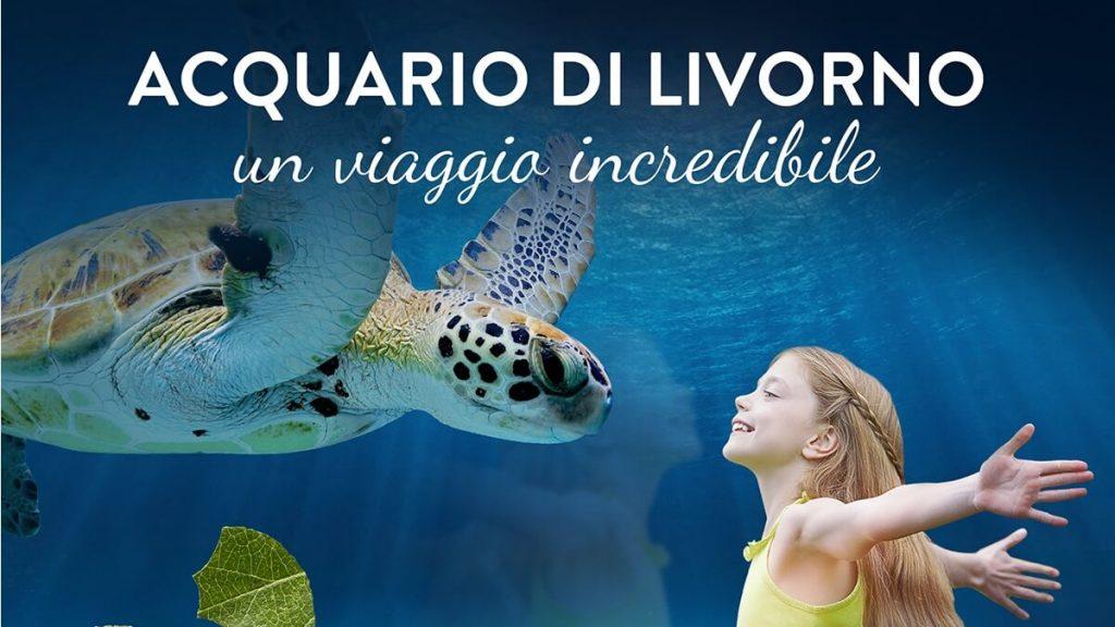 Acquario di Livorno, bambina felice ammira una tartaruga marina