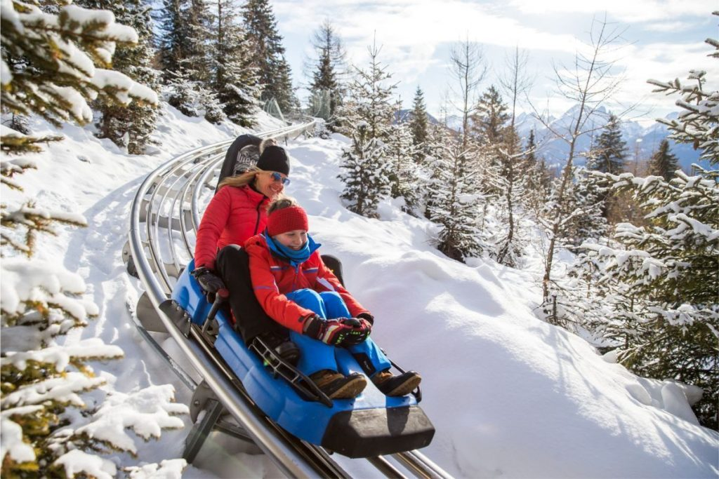 Alpine Coaster a Gardonè - Predazzo (Val di Fiemme)